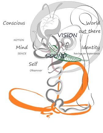 three bodies; conscious, mind wot + shape labelled cog 2 vis sound.jpg